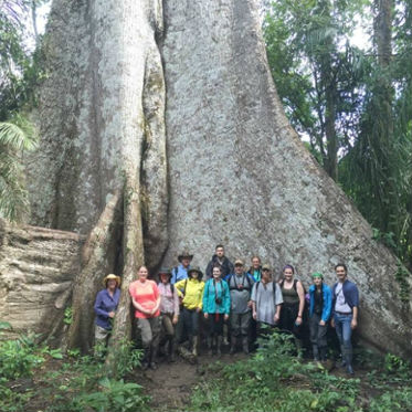 group in front of big tree