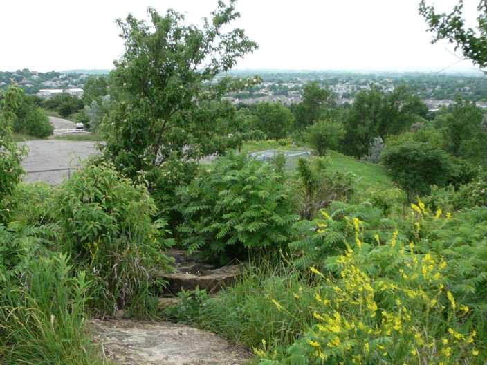 Burnett's Mound, June 2007, Topeka, Kansas